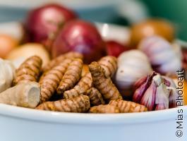Vegan kochen und genießen
